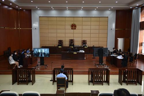 云南文山:师生家长走进法庭共同接受法治教育